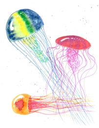 medusas021